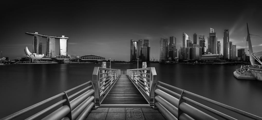 Singapore Skyline by Partha Roy
