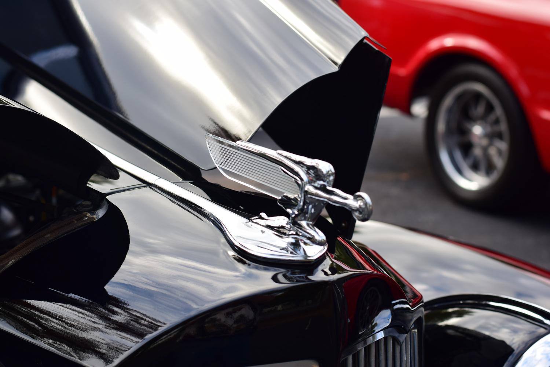 Packard Hood Ornament by Greg Gero