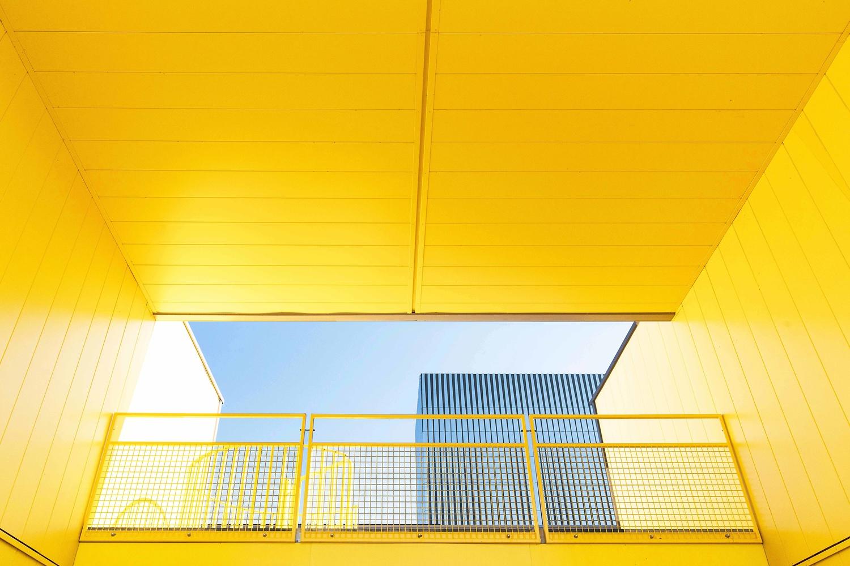 Yellow by Hans van Voorst