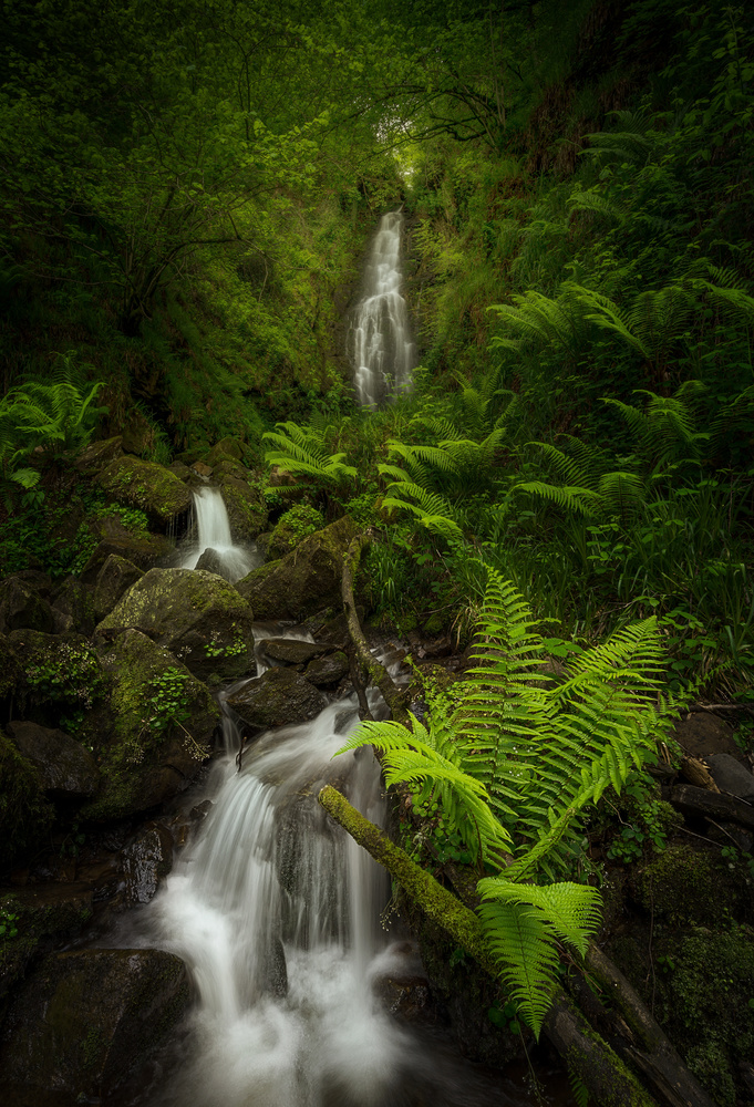 Heaven Creek by Jon Zumalabe