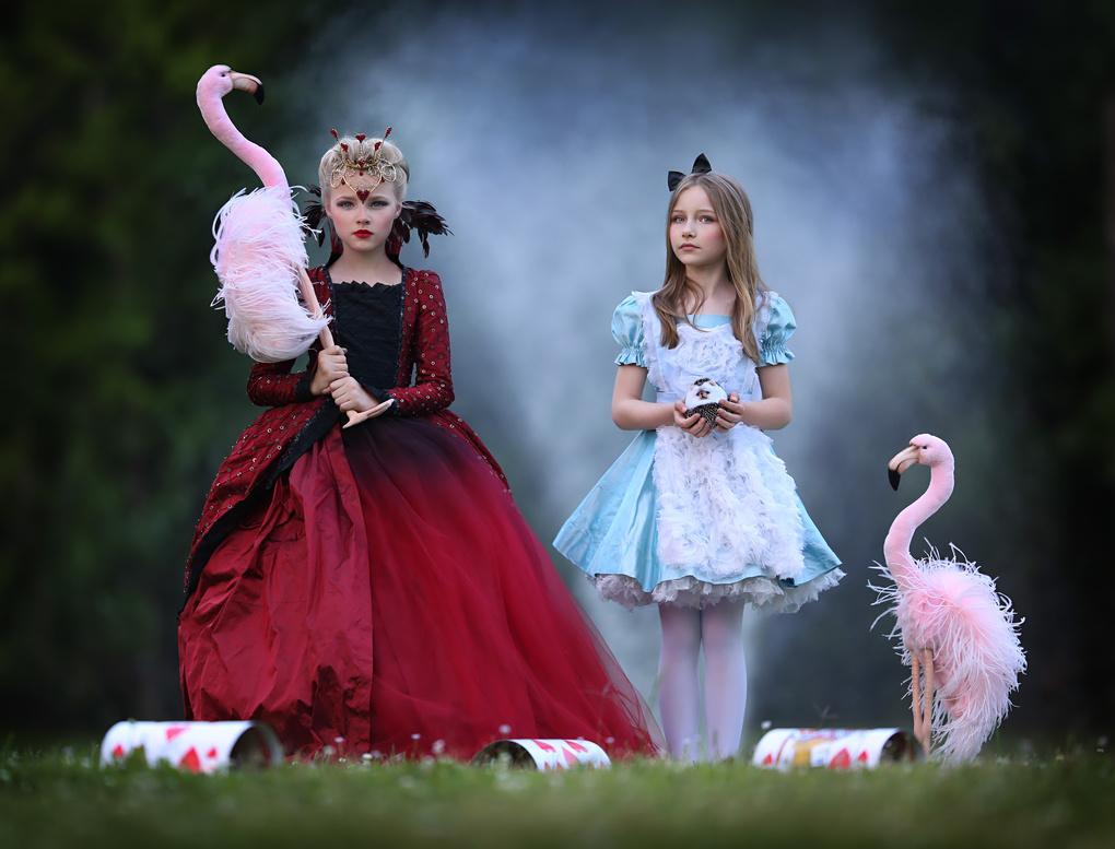 flamingo social by Katie Andelman