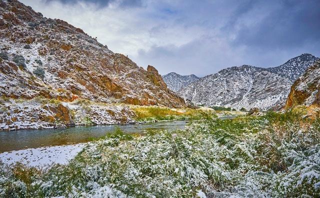 First Snow by Mark Mathews