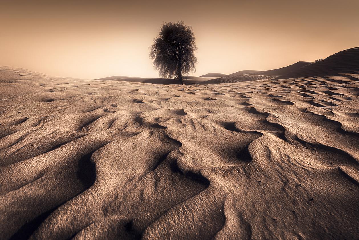 leading lines by Hanaa Turkistani