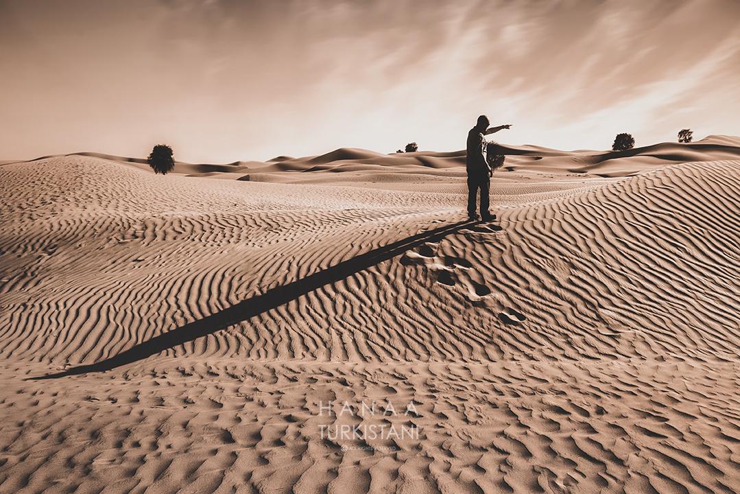 Long shade by Hanaa Turkistani