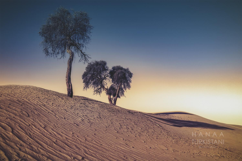 sundown by Hanaa Turkistani