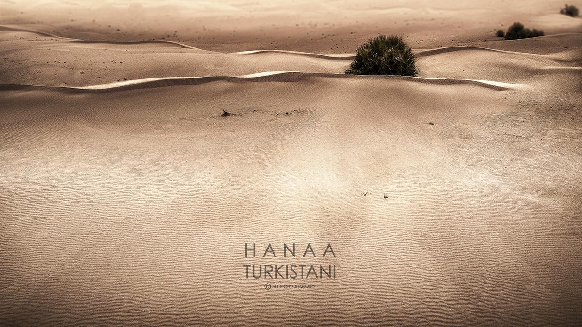 desert by Hanaa Turkistani