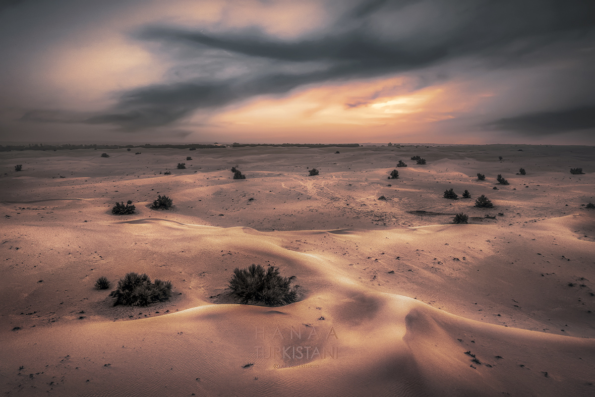 desert and express by Hanaa Turkistani
