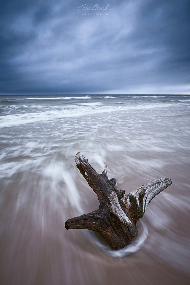 Sea by Adrian Misiak