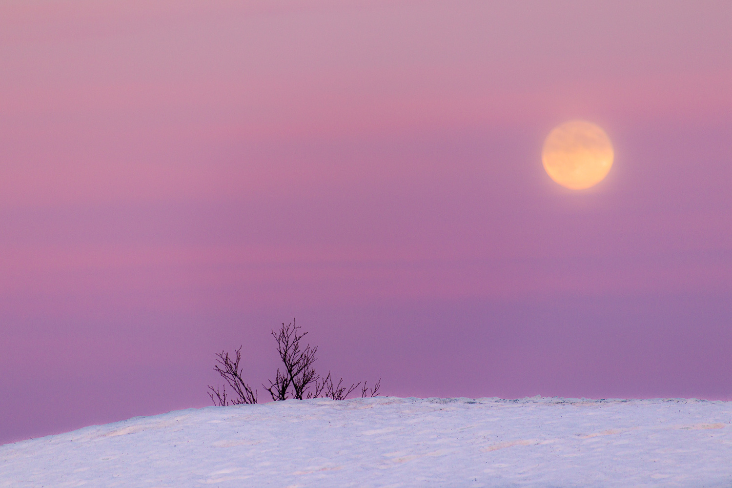 Moon in Sunset by Trygve Selmer