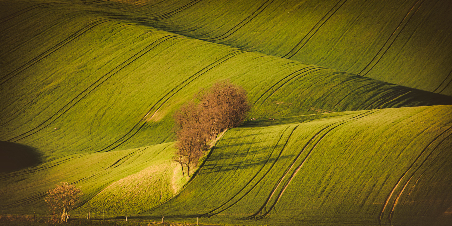 Touch of the first sun rays in landscape by Pavel Rezac