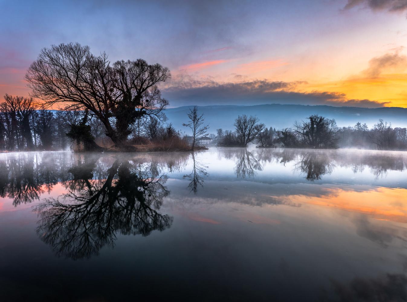 Frozen Symmetry by Ammar Selmanović