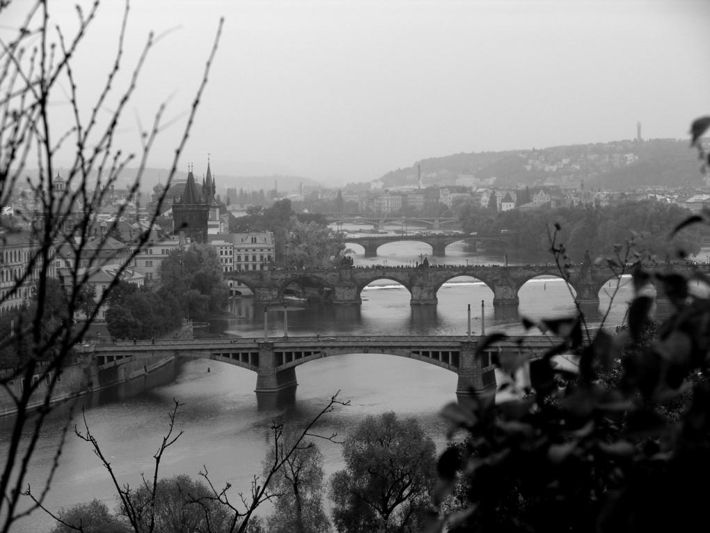 Prague Inspired by Walton Ciferri