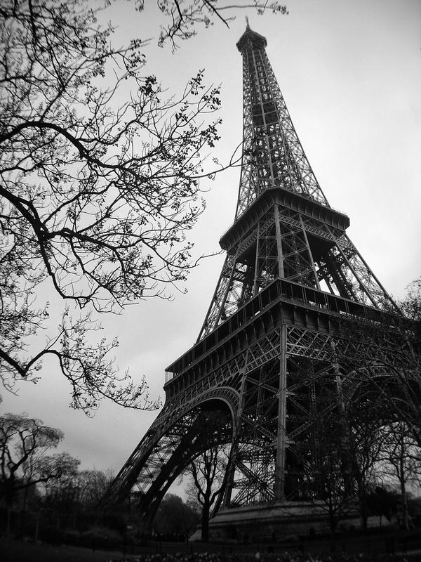 Towering Eiffel over Trees by Walton Ciferri