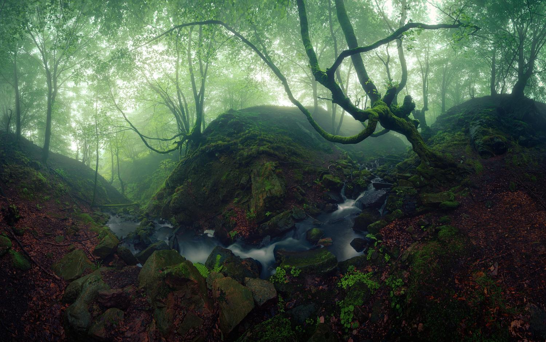 Uncharted worlds by Eneko Guerra