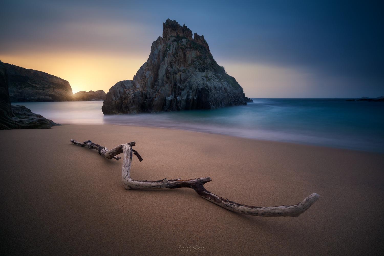 Mexota by David Garcia
