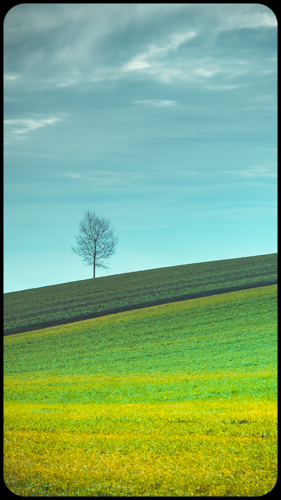 Flat by Stipica Vrbat