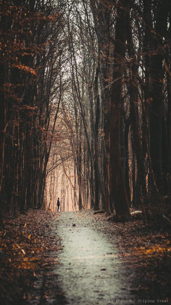 Human vs Nature by Stipica Vrbat