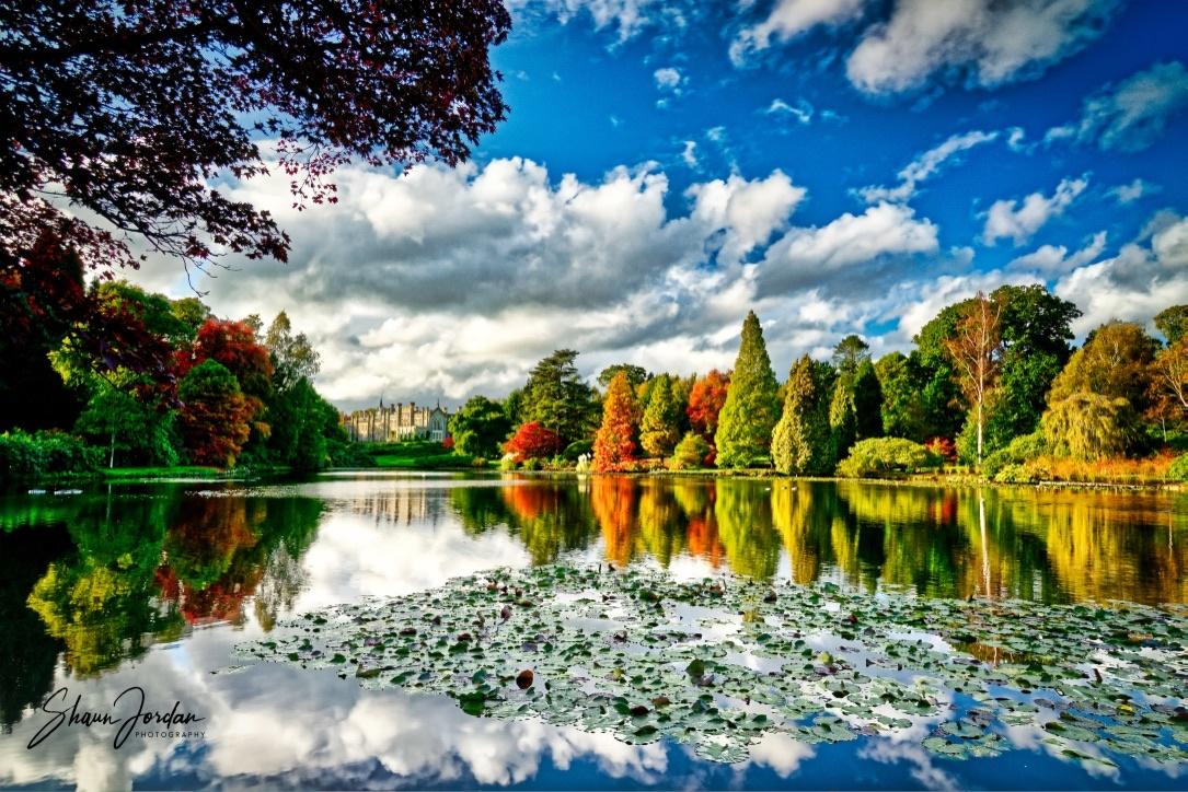 Autumn Reflections by shaun jordan