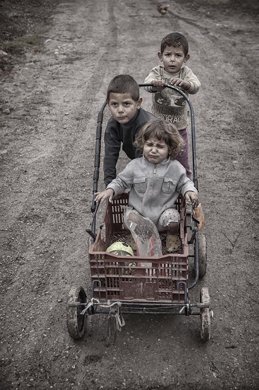 Brestniza Push Cart by Mark Edwards