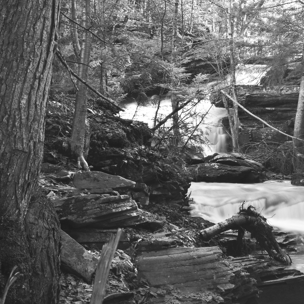 Below Garden Creek Falls Part 1 by James Jewers
