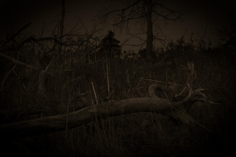 Spooky Hillside by James Jewers