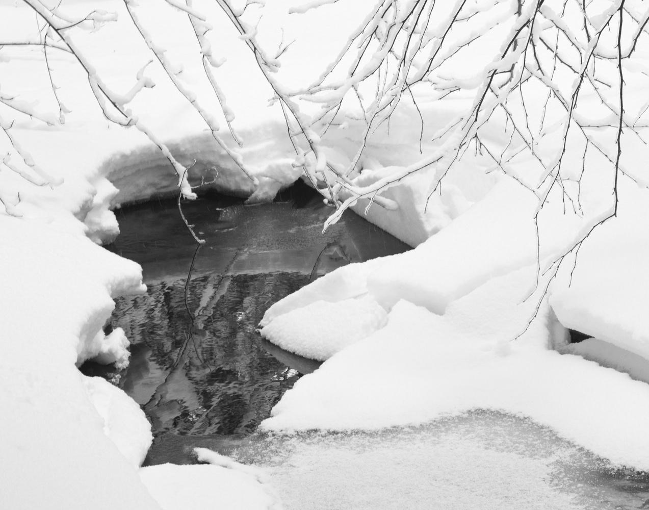Winter Scene by James Jewers