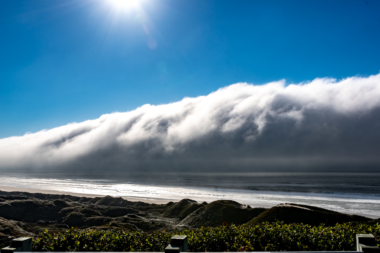 Coastal Wave by Michelle Soleil