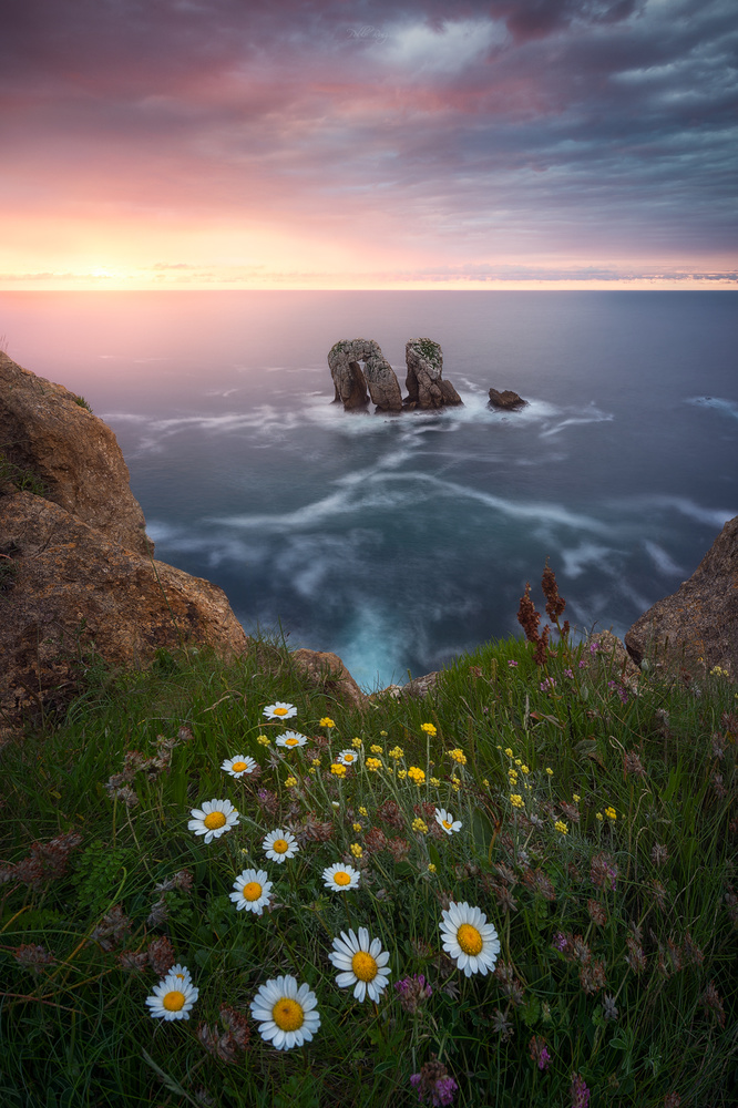 Welcome to spring by Pablo Ruiz Garcia