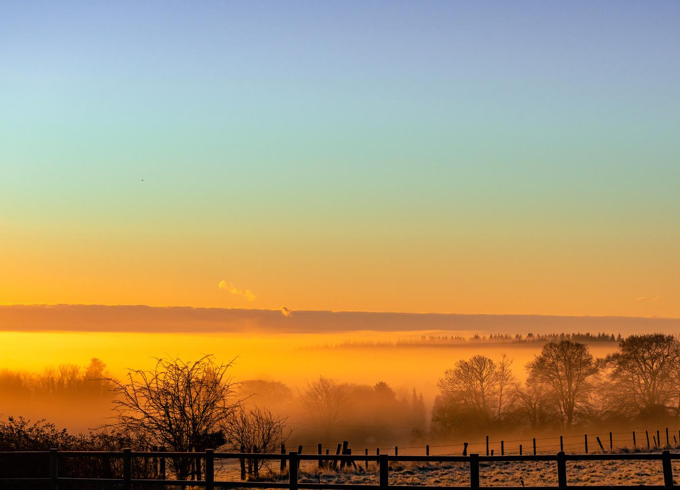 Misty Dawn by Richard Gale