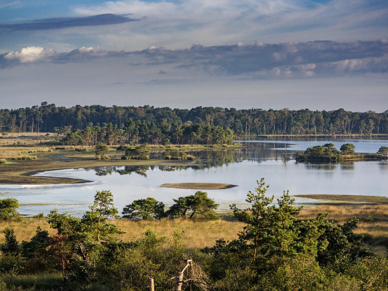 Kalmthout lake by Richard Gale