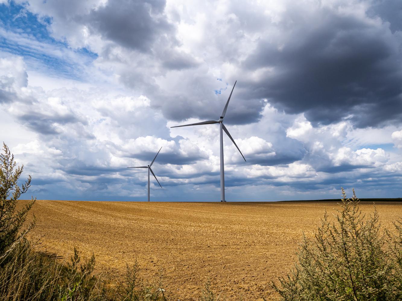 Windmills by Richard Gale