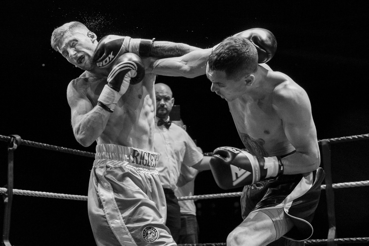 Knock out by Thomas Wragg
