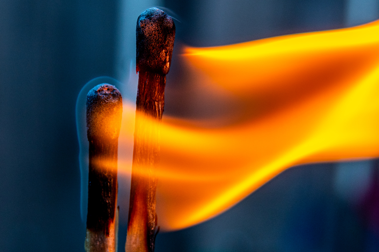 Macro Matches by Jacob Pelley