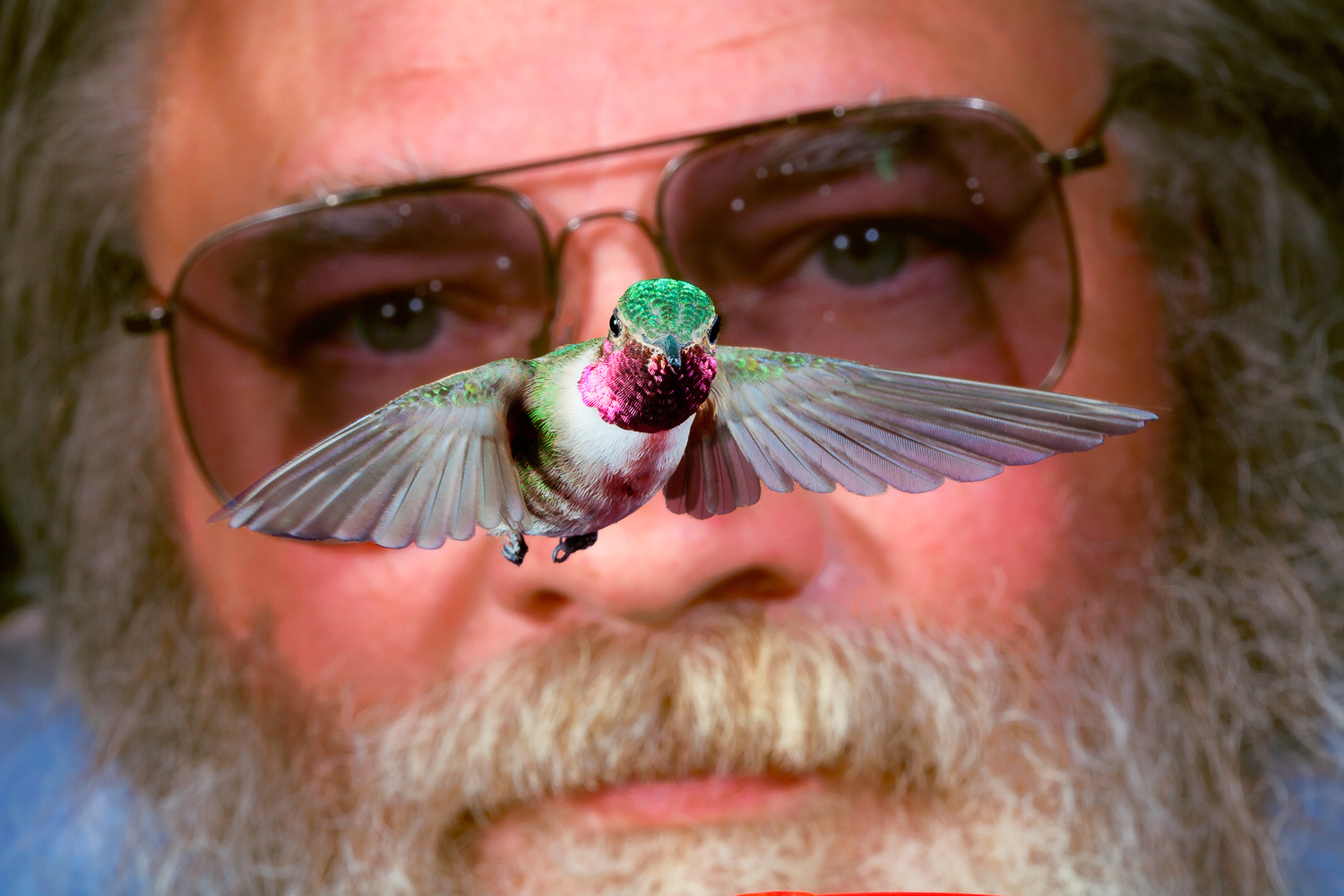 Self Portrait with Male Broad-tail Hummingbird by Gregory Scott