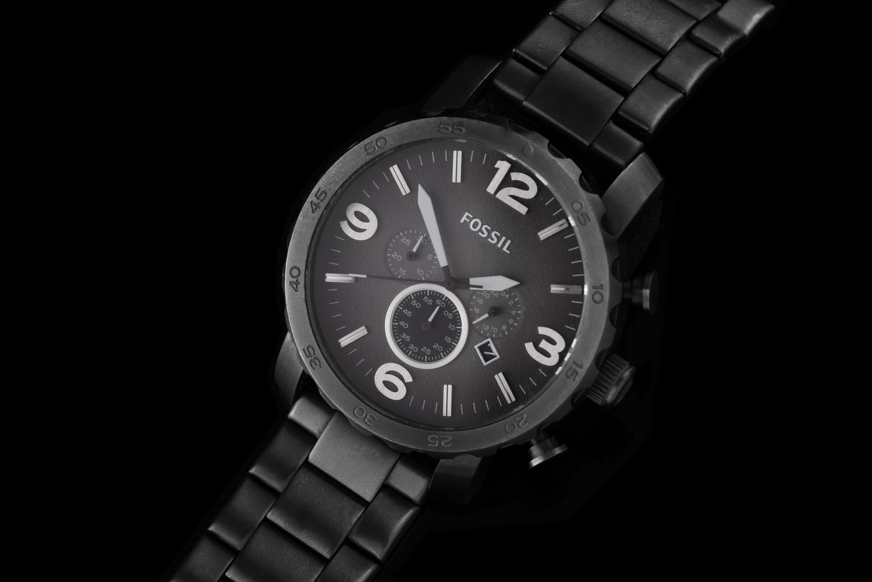 Fossil Watch by David Milton