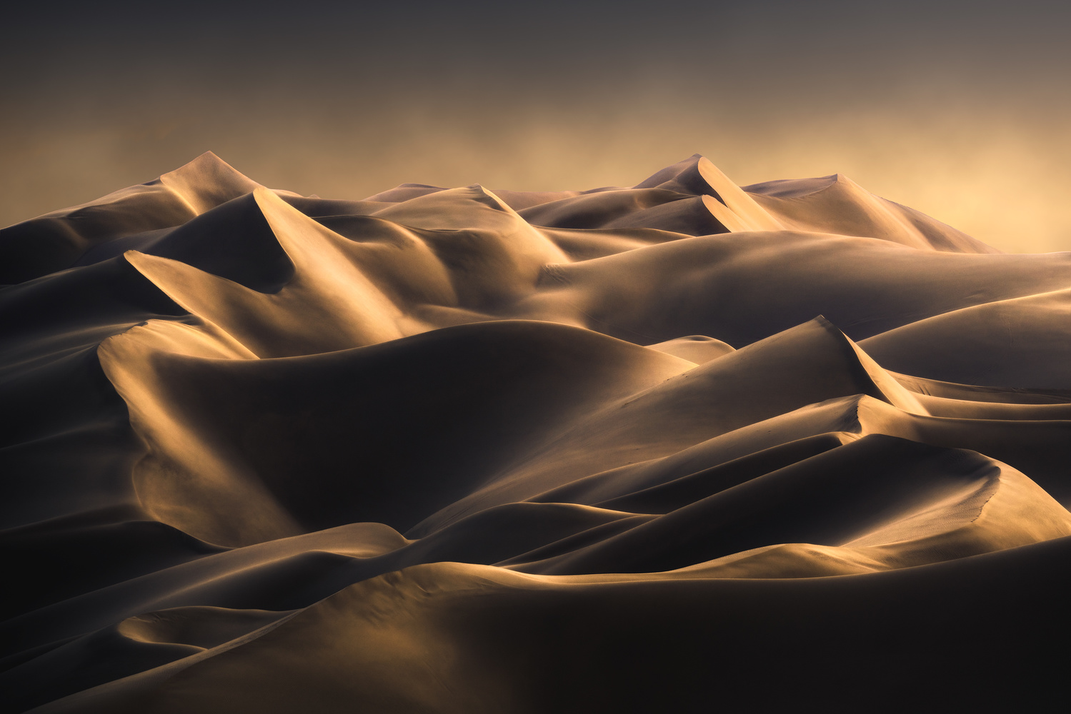 Lines by Hossein Sedghi