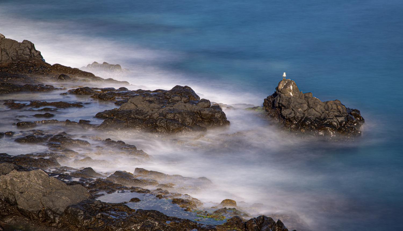 Basalt coast. by Marcin Nowacki