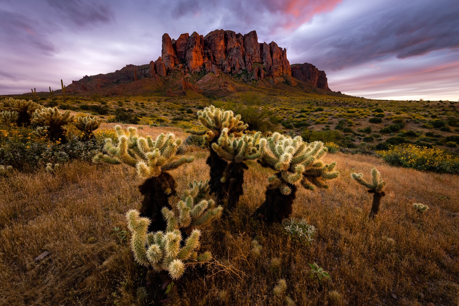 Arizona by Tyler Sorensen