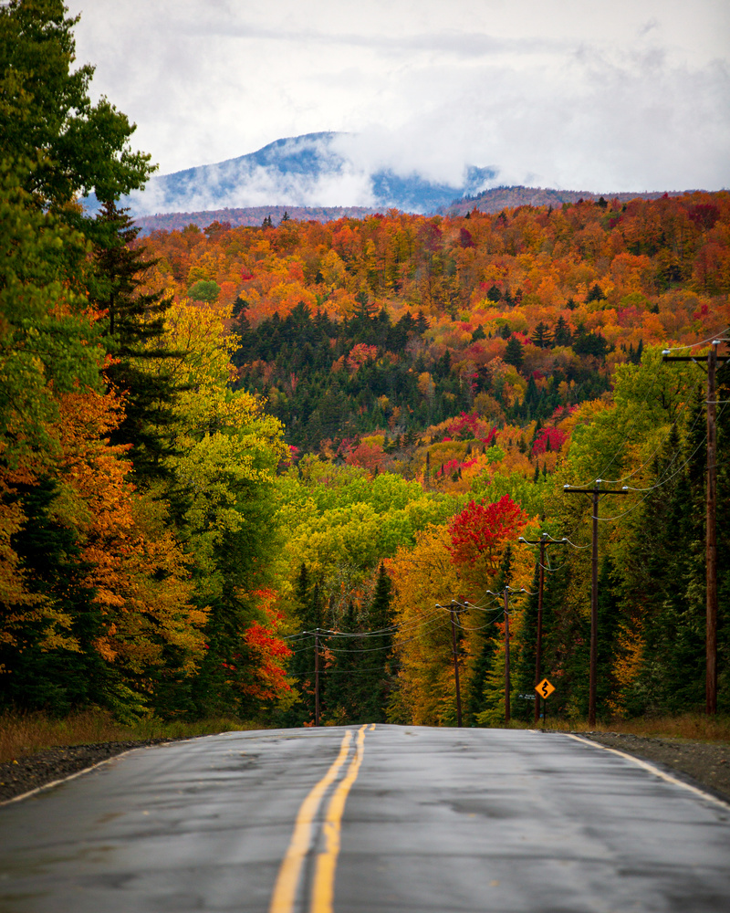 Fall Road Maine by Patrick Higgins