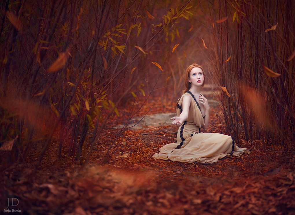 Waiting for Fall by Jessica Drossin