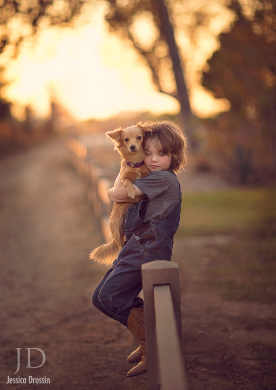 Rescue Dogs Rock by Jessica Drossin