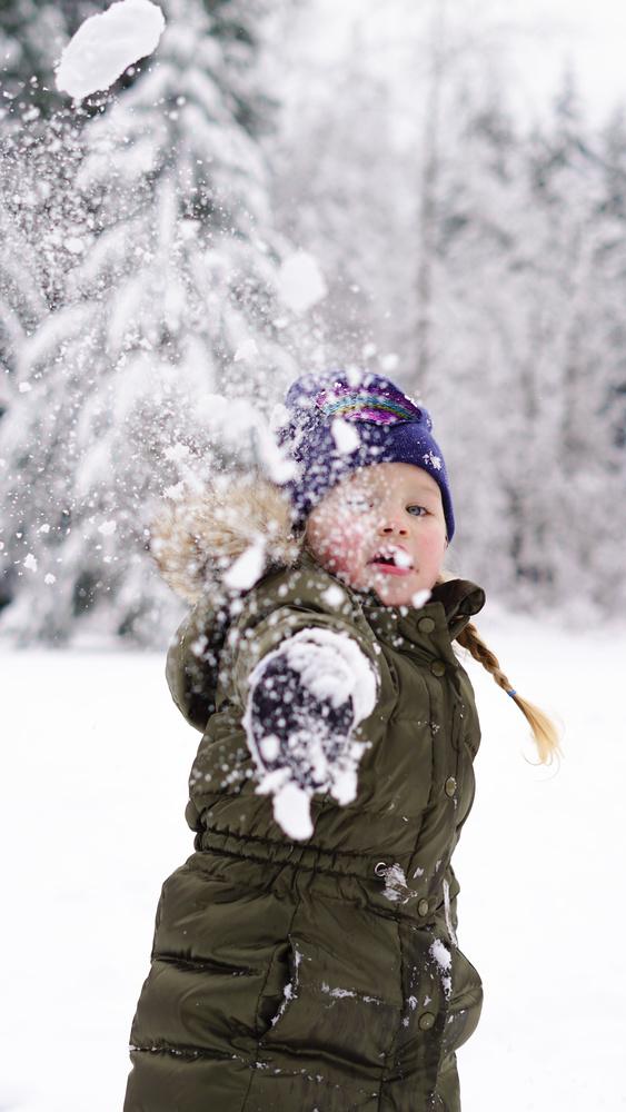 Snowball! by Jennifer Birdlebough
