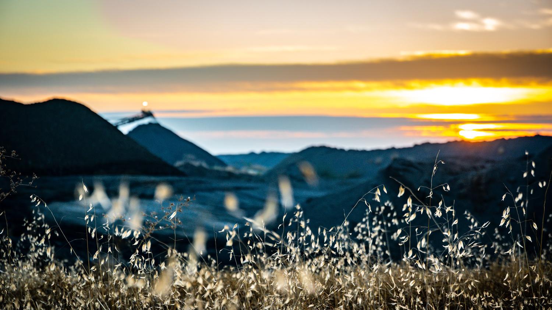 Quarry Morning by Daniel Mekis