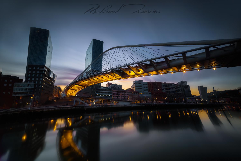 Last lights by richard toribio casares