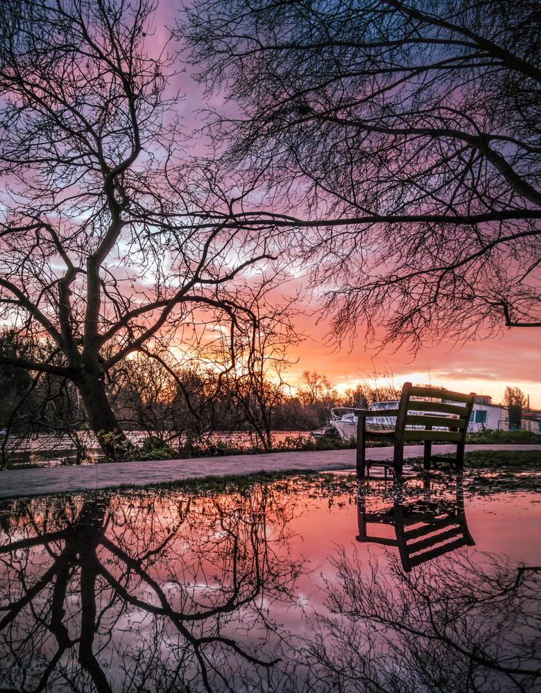 Stop and Reflect by Julian Macedo