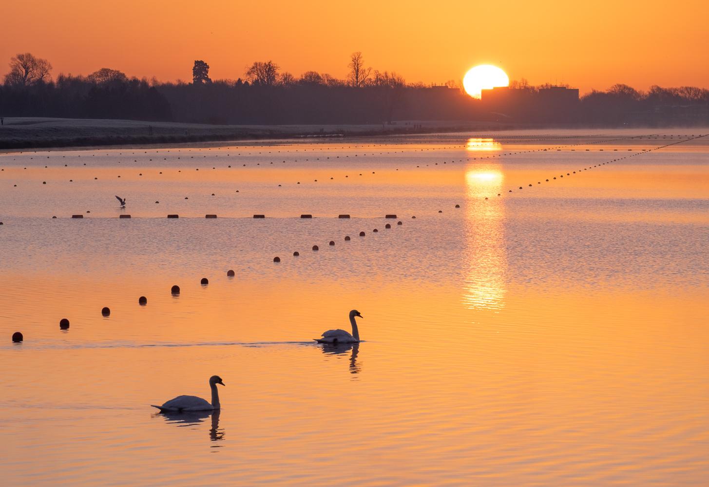 Winter sunrise, Dorney Lake by Julian Macedo