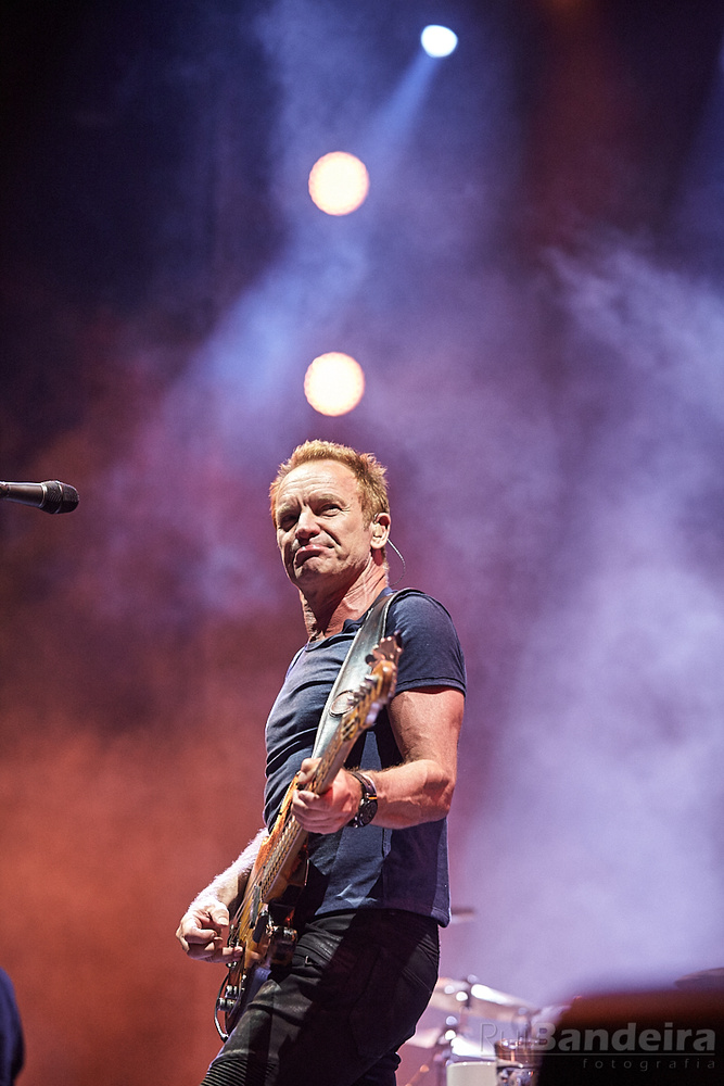 Sting by Rui Bandeira