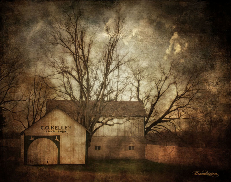 Stock Farm by Tony Brandstetter
