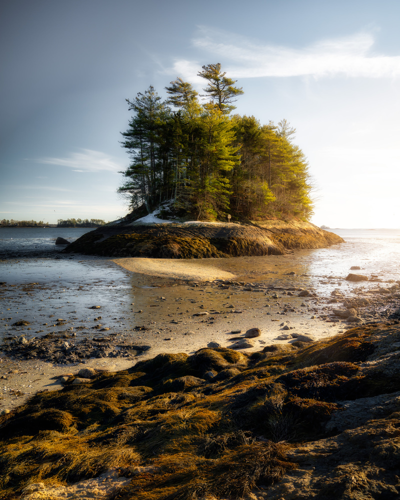 Wolfe's neck woods state park Maine by Skyler Ewing