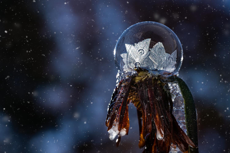 Soap bubble by Skyler Ewing